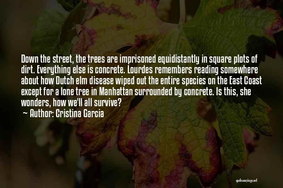 Surrounded By Trees Quotes By Cristina Garcia