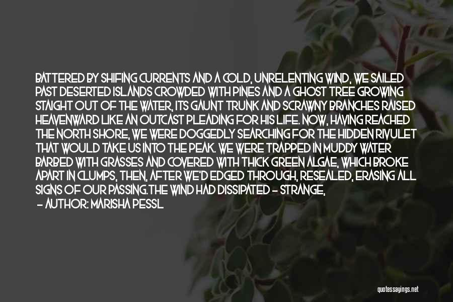 Surrounded By Trees Quotes By Marisha Pessl