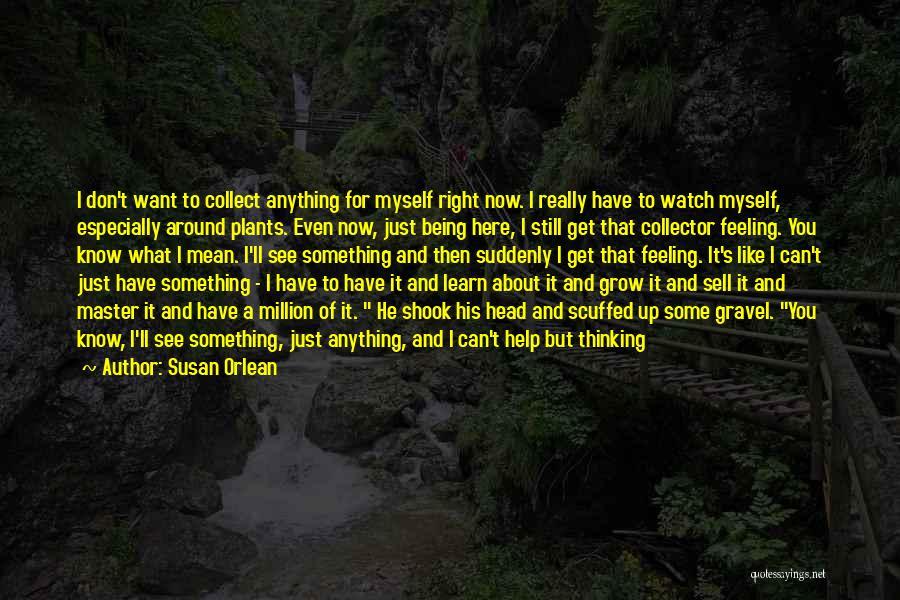 Susan Orlean Quotes 1004695