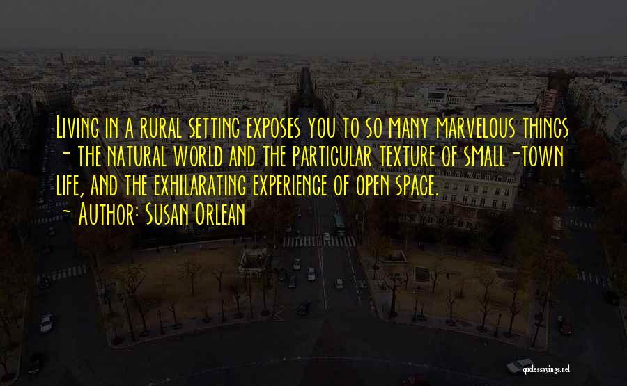 Susan Orlean Quotes 1091095