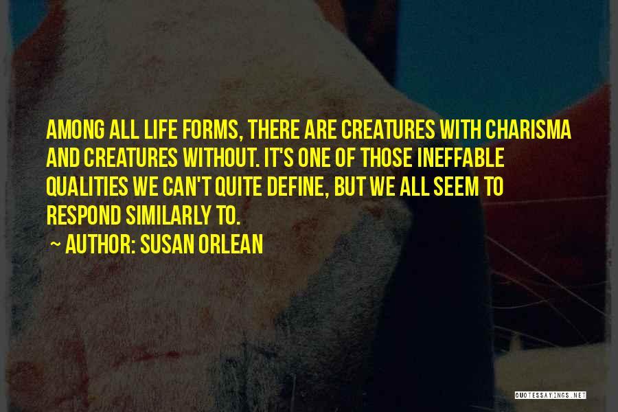 Susan Orlean Quotes 1098757