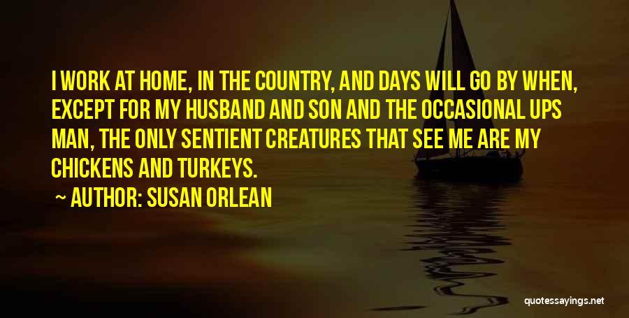 Susan Orlean Quotes 1327803