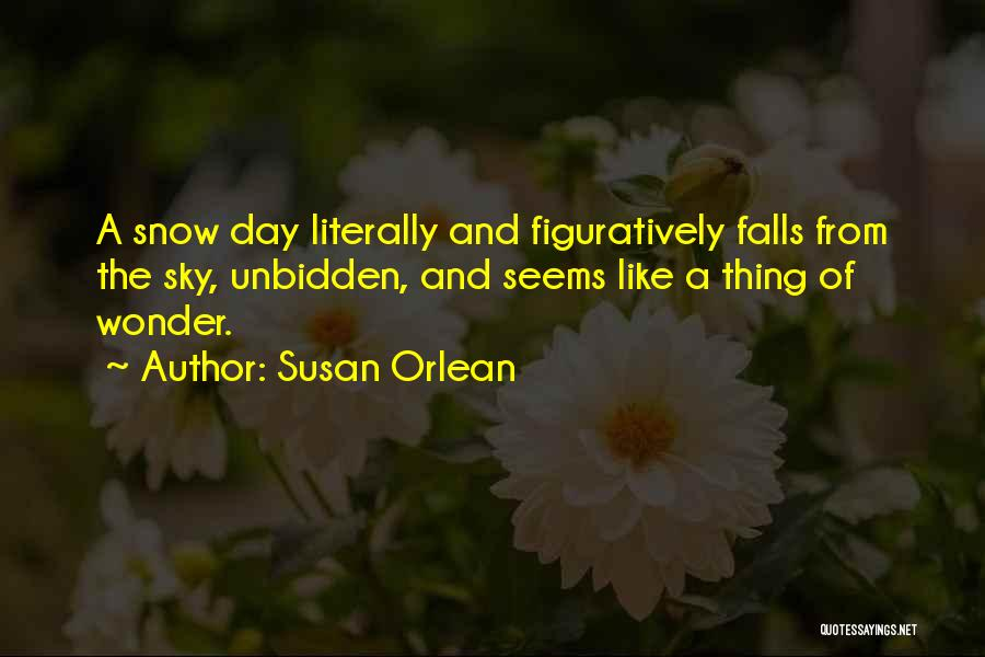 Susan Orlean Quotes 1566299