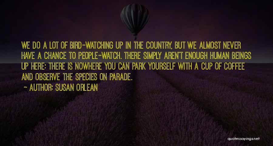 Susan Orlean Quotes 1707467