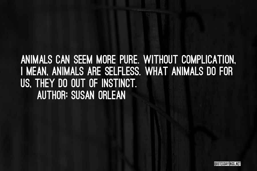 Susan Orlean Quotes 2030070