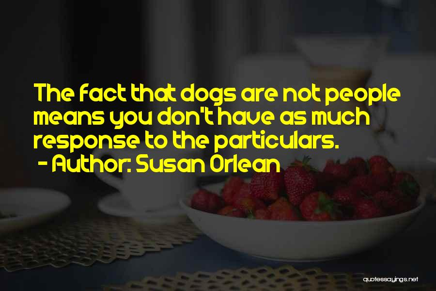 Susan Orlean Quotes 409003