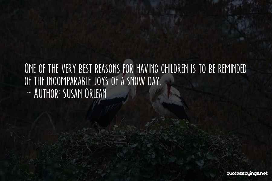 Susan Orlean Quotes 410188