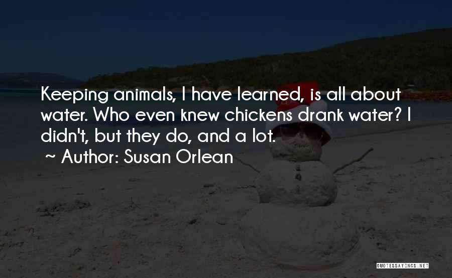 Susan Orlean Quotes 445122