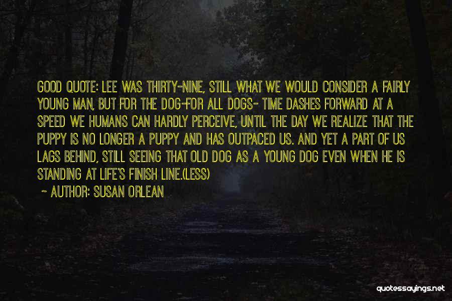 Susan Orlean Quotes 552355