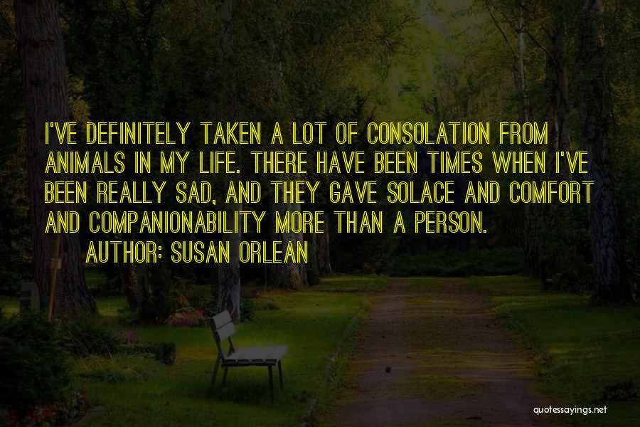 Susan Orlean Quotes 599721