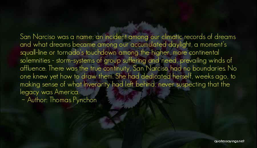 Suspecting Quotes By Thomas Pynchon