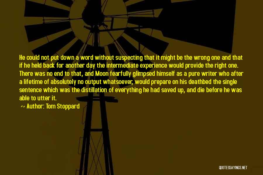 Suspecting Quotes By Tom Stoppard