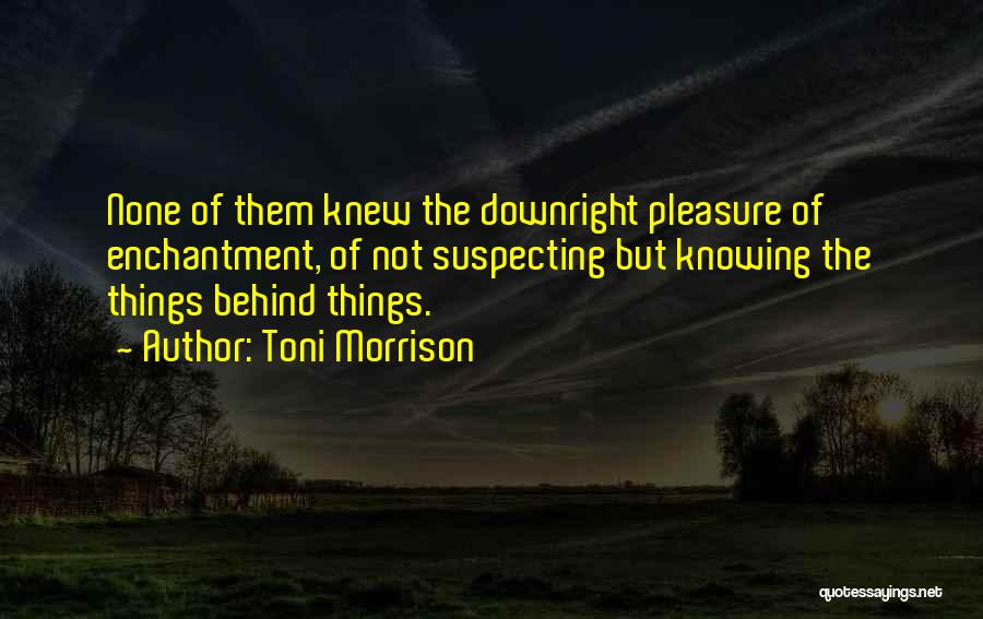 Suspecting Quotes By Toni Morrison
