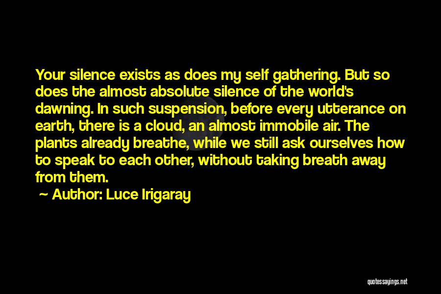 Suspension Love Quotes By Luce Irigaray