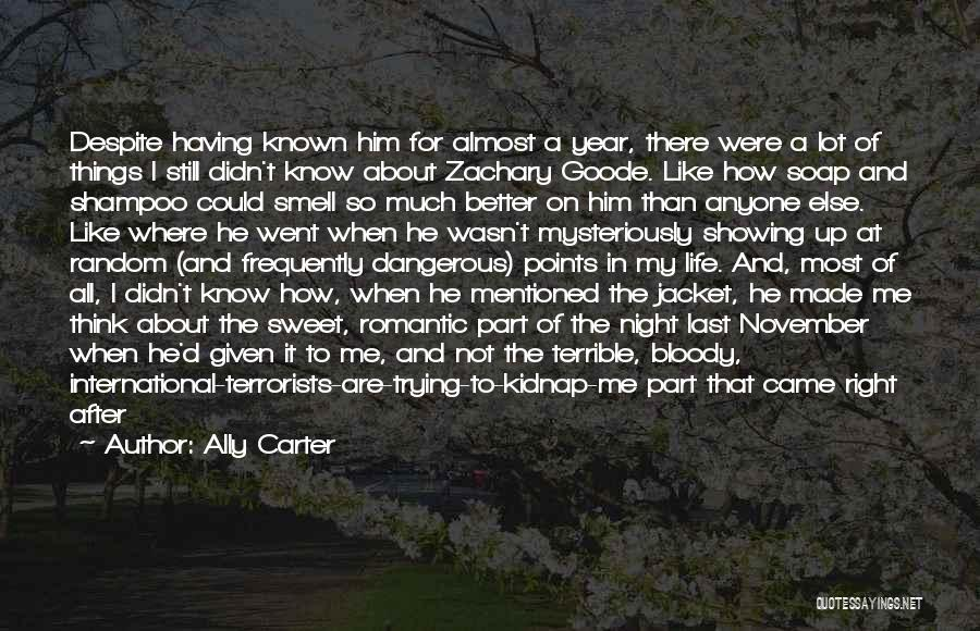 Sweet Things In Life Quotes By Ally Carter