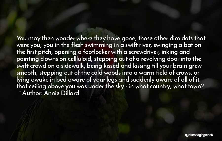 Swimming In The River Quotes By Annie Dillard
