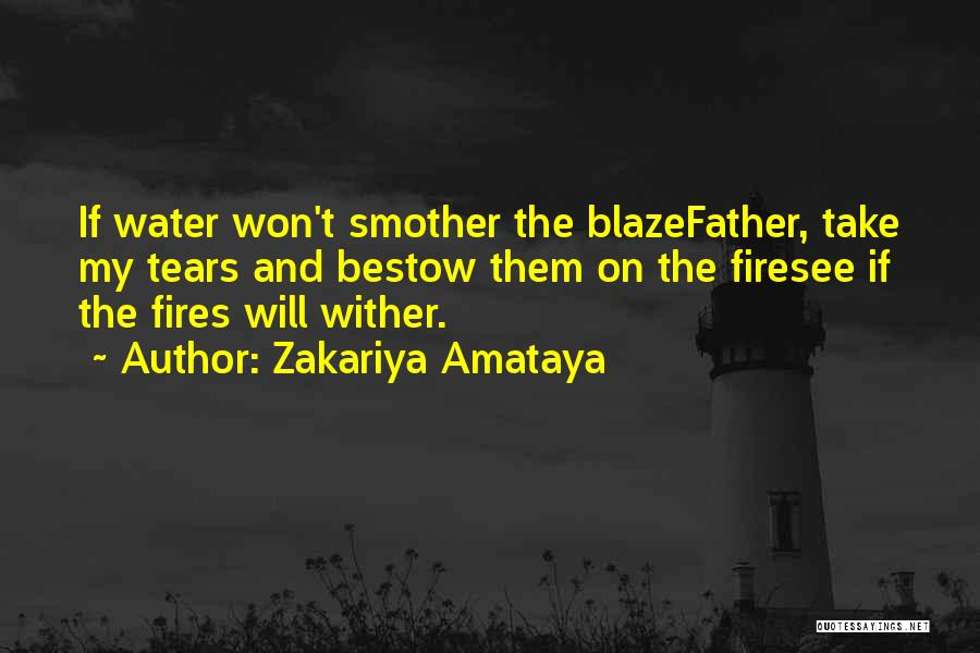 Take Me As I Am Poems Quotes By Zakariya Amataya