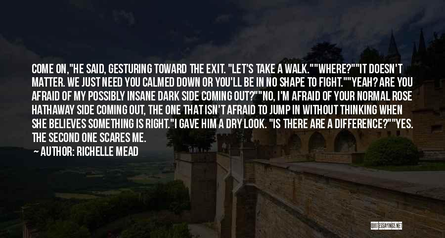 Take Me Out Quotes By Richelle Mead