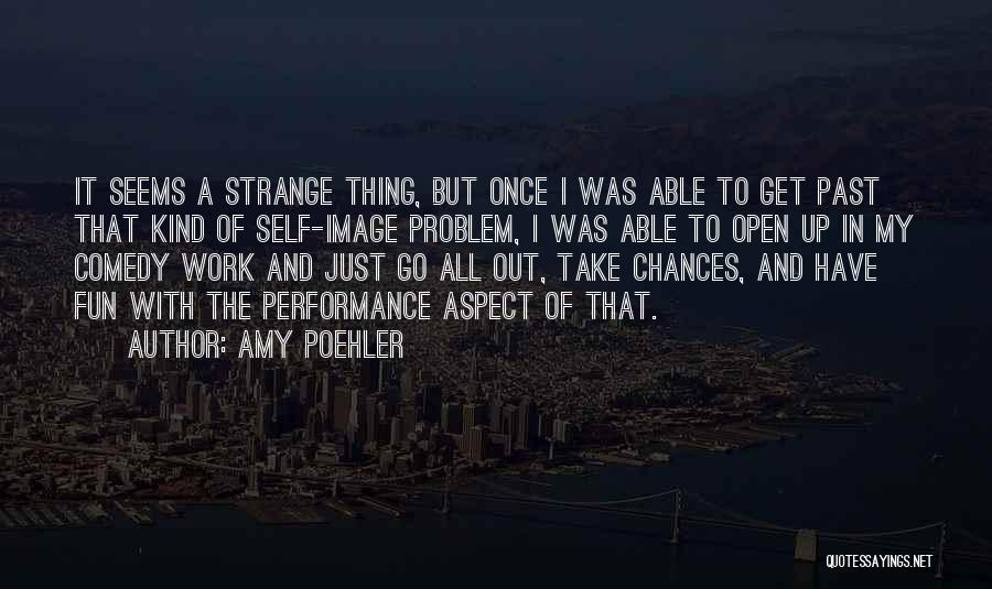 Take My Chances Quotes By Amy Poehler
