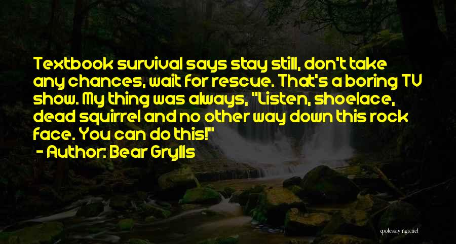 Take My Chances Quotes By Bear Grylls