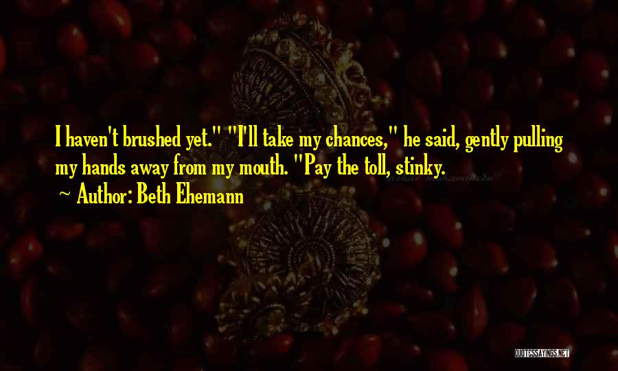 Take My Chances Quotes By Beth Ehemann