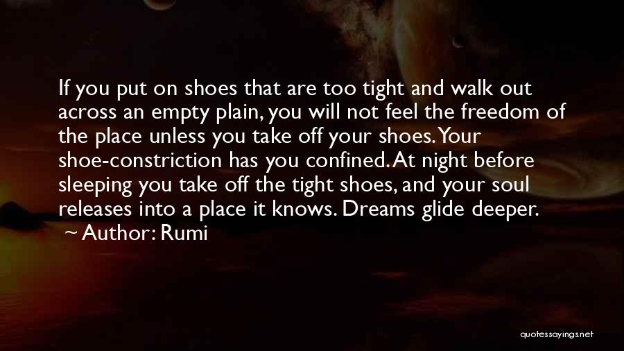 Take Off Your Shoes Quotes By Rumi