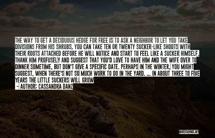 Take Your Time Love Quotes By Cassandra Danz