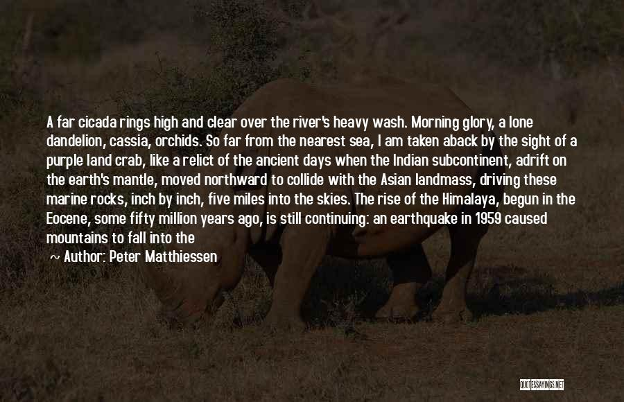 Taken Aback Quotes By Peter Matthiessen