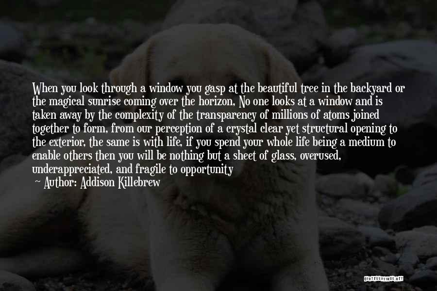 Taken Advantage Off Quotes By Addison Killebrew