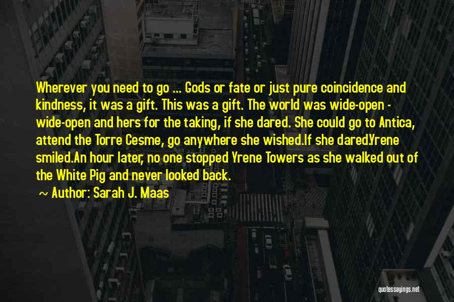 Taking Back Your Ex Quotes By Sarah J. Maas