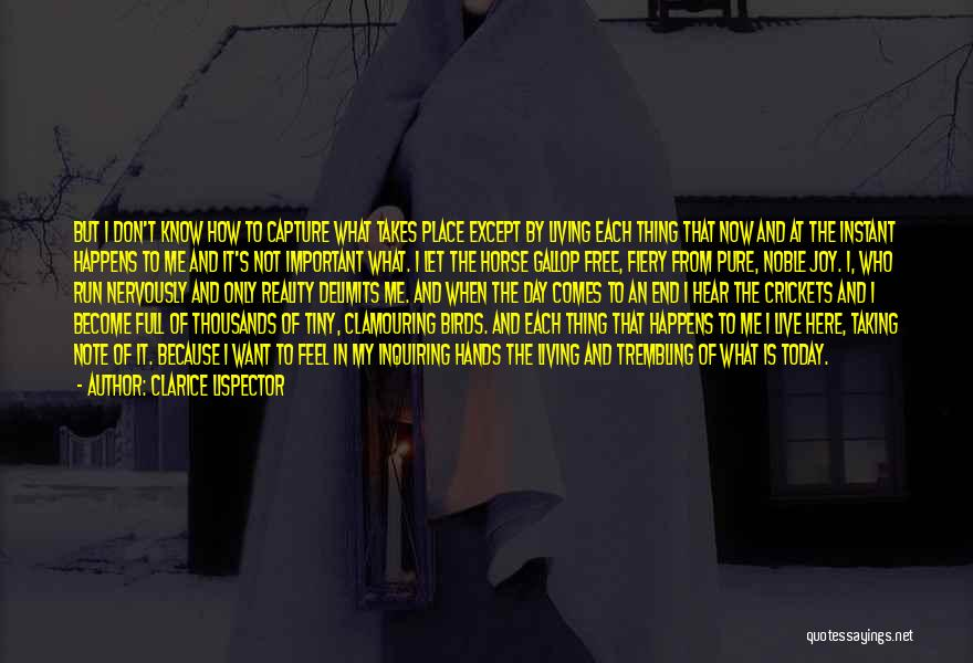 Taking Note Quotes By Clarice Lispector