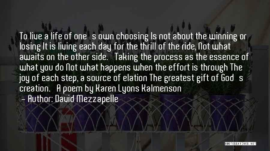 Taking One's Life Quotes By David Mezzapelle