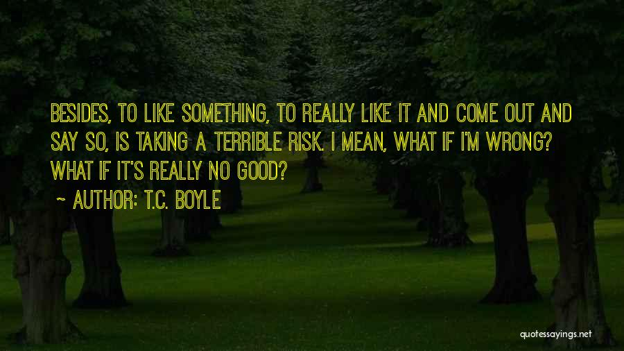 Taking Things Wrong Way Quotes By T.C. Boyle