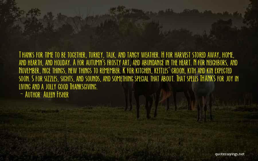 Talk Soon Quotes By Aileen Fisher