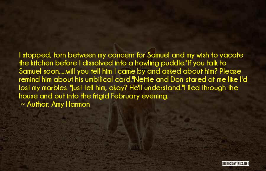 Talk Soon Quotes By Amy Harmon