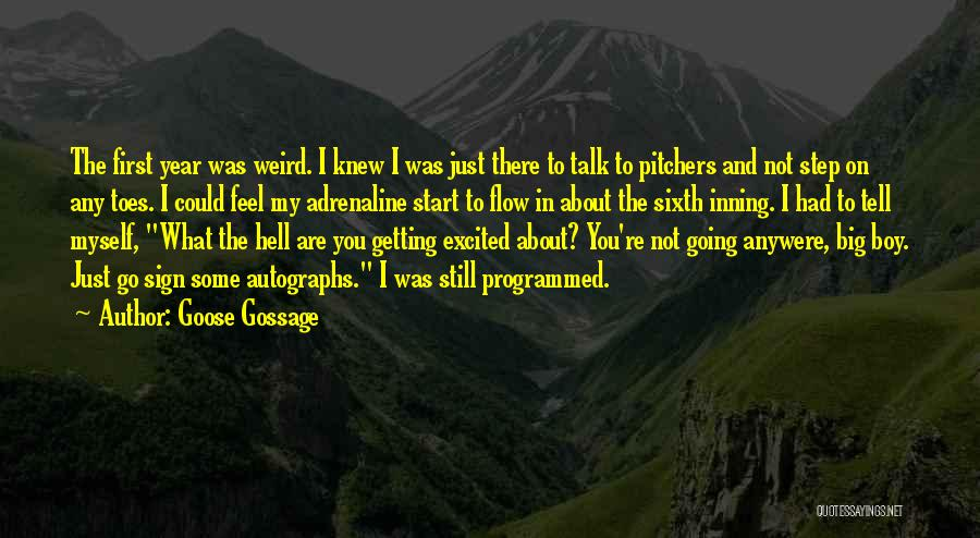 Talk To Myself Quotes By Goose Gossage