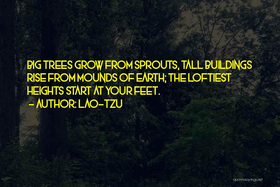 Tall Buildings Quotes By Lao-Tzu