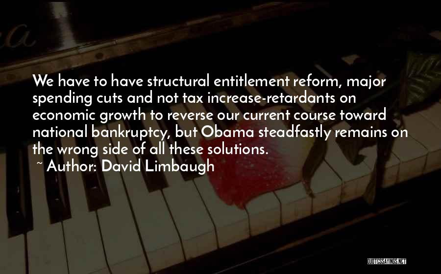 Tax Reform Quotes By David Limbaugh