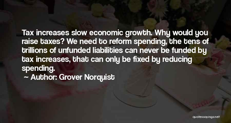 Tax Reform Quotes By Grover Norquist