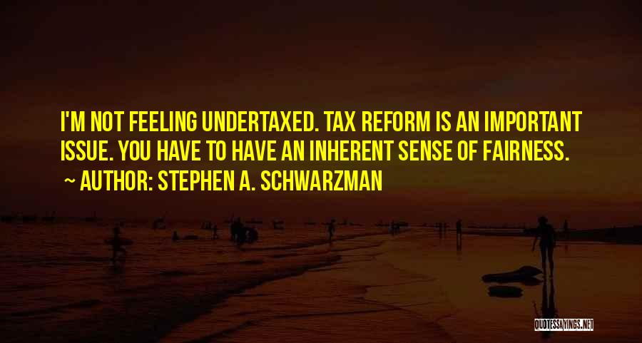 Tax Reform Quotes By Stephen A. Schwarzman