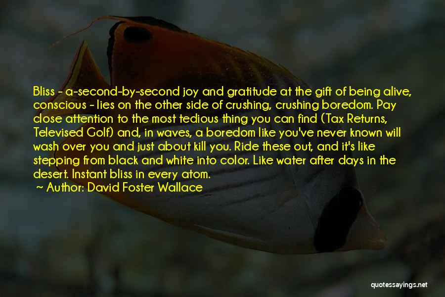 Tax Returns Quotes By David Foster Wallace