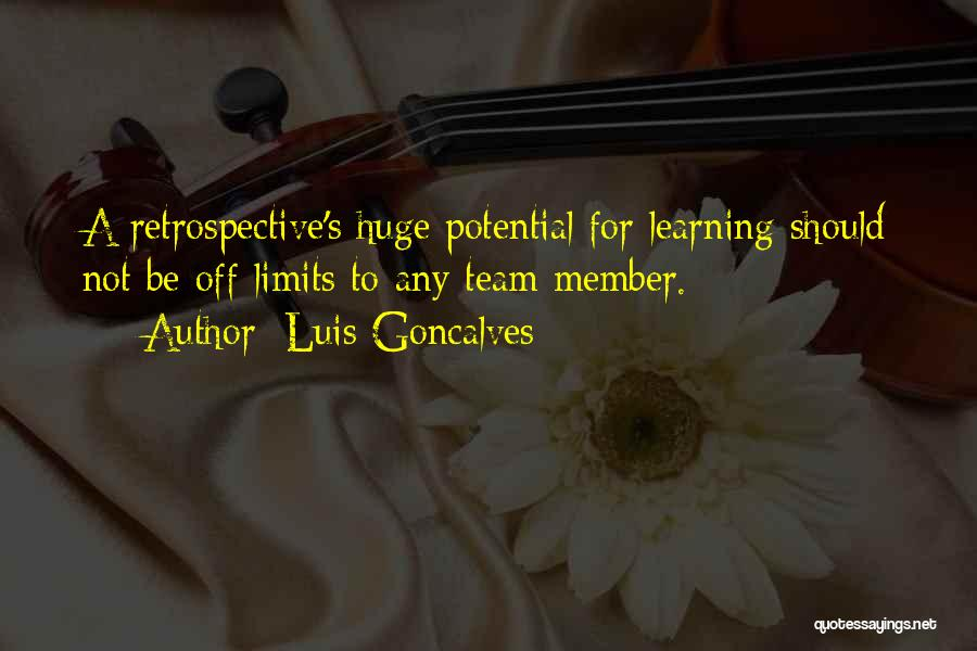 Team Member Quotes By Luis Goncalves