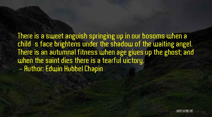 Tearful Quotes By Edwin Hubbel Chapin