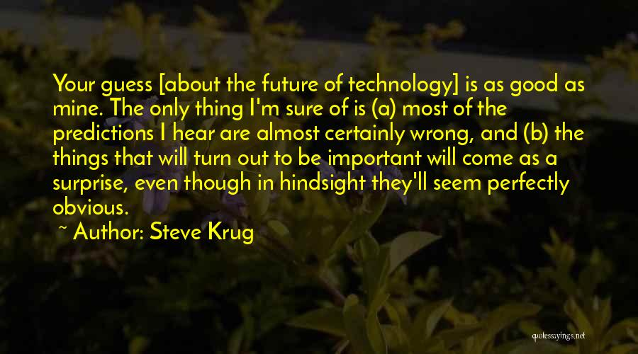 Technology And The Future Quotes By Steve Krug