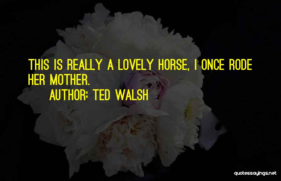 Ted Walsh Quotes 336064