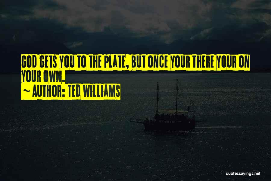 Ted Williams Quotes 2135402