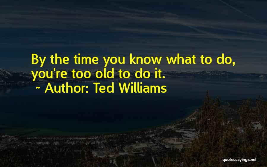 Ted Williams Quotes 605732