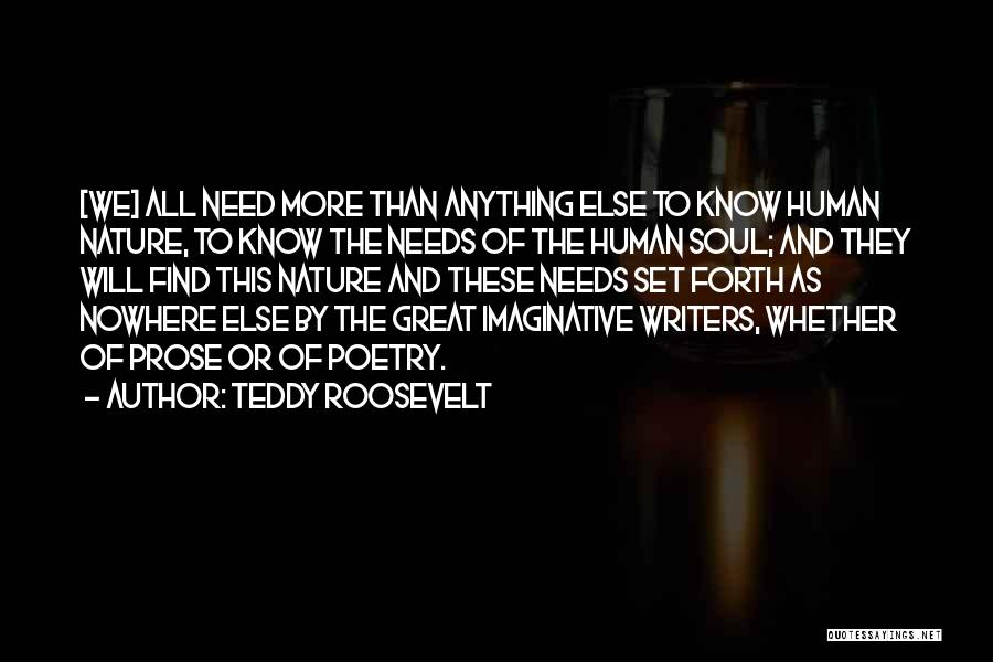 Teddy Roosevelt Quotes 172100