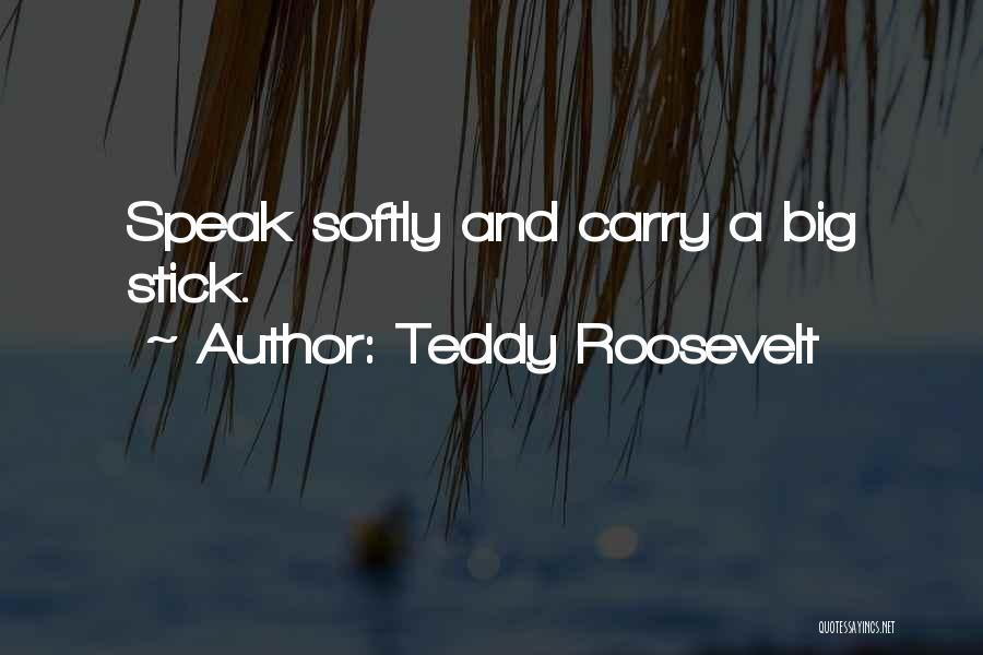 Teddy Roosevelt Quotes 99310