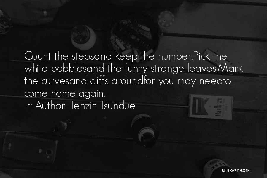 Tenzin Tsundue Quotes 760484